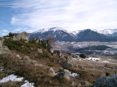 paysagepp1.jpg
