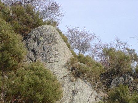 gnomesjanvier07055.jpg