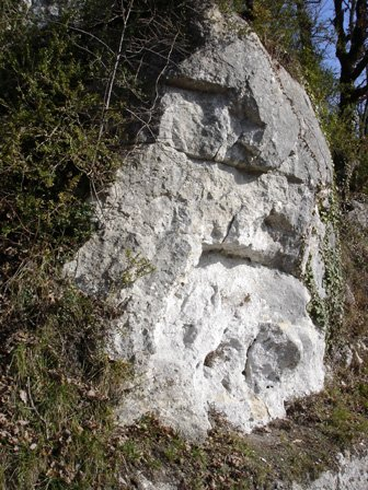 pierre10.jpg