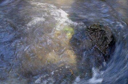 eau004.jpg