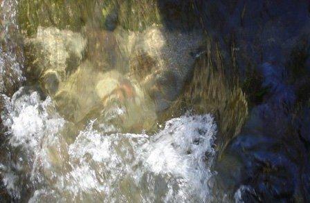 eau005.jpg