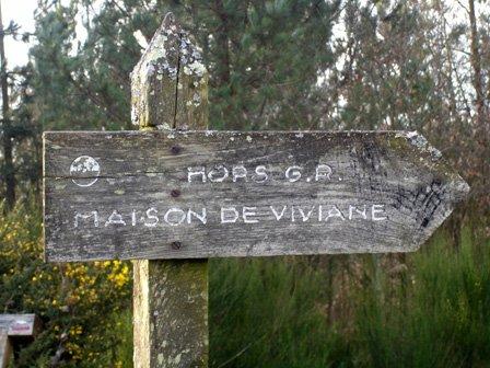 viviane6.jpg